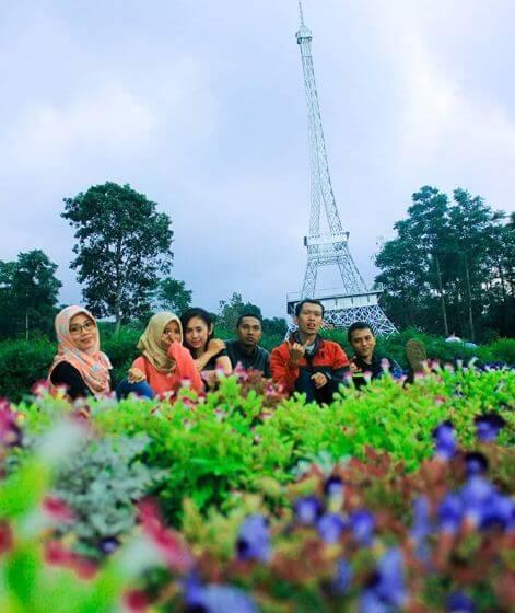menara eifel kebun bunga celosia