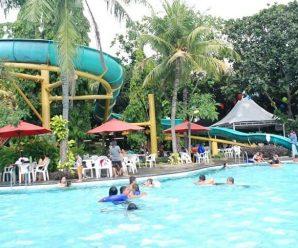 wisata kolam renang taman Semanan