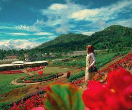 Taman Bunga Kutabawa Purbalingga