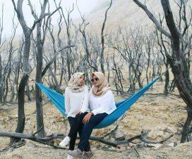 sejarah hutan mati gunung Papandayan