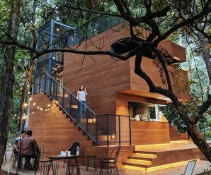 Arborea Cafe Manggala