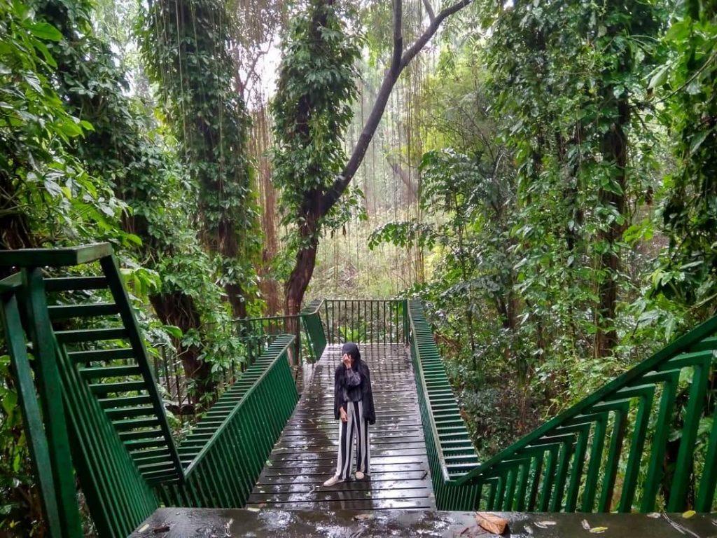 forest walk Babakan