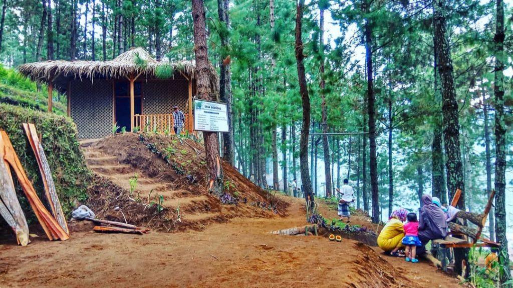 Taman Oemah Pinus di Tegal