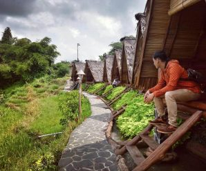 Saung Dolet Serang Banten