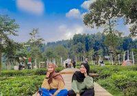 foto Kembang Langit Park Batang